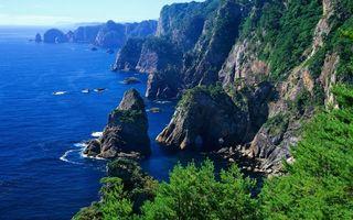 Бесплатные фото лес,трава,скалы,вода,море,волны,океан