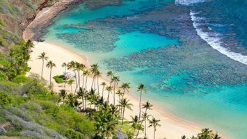Бесплатные фото море,вода,берег,песок,пальмы,горы,природа