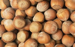 Заставки орехи,фундук,скорлупа,коричневые,заставка,фон,обои