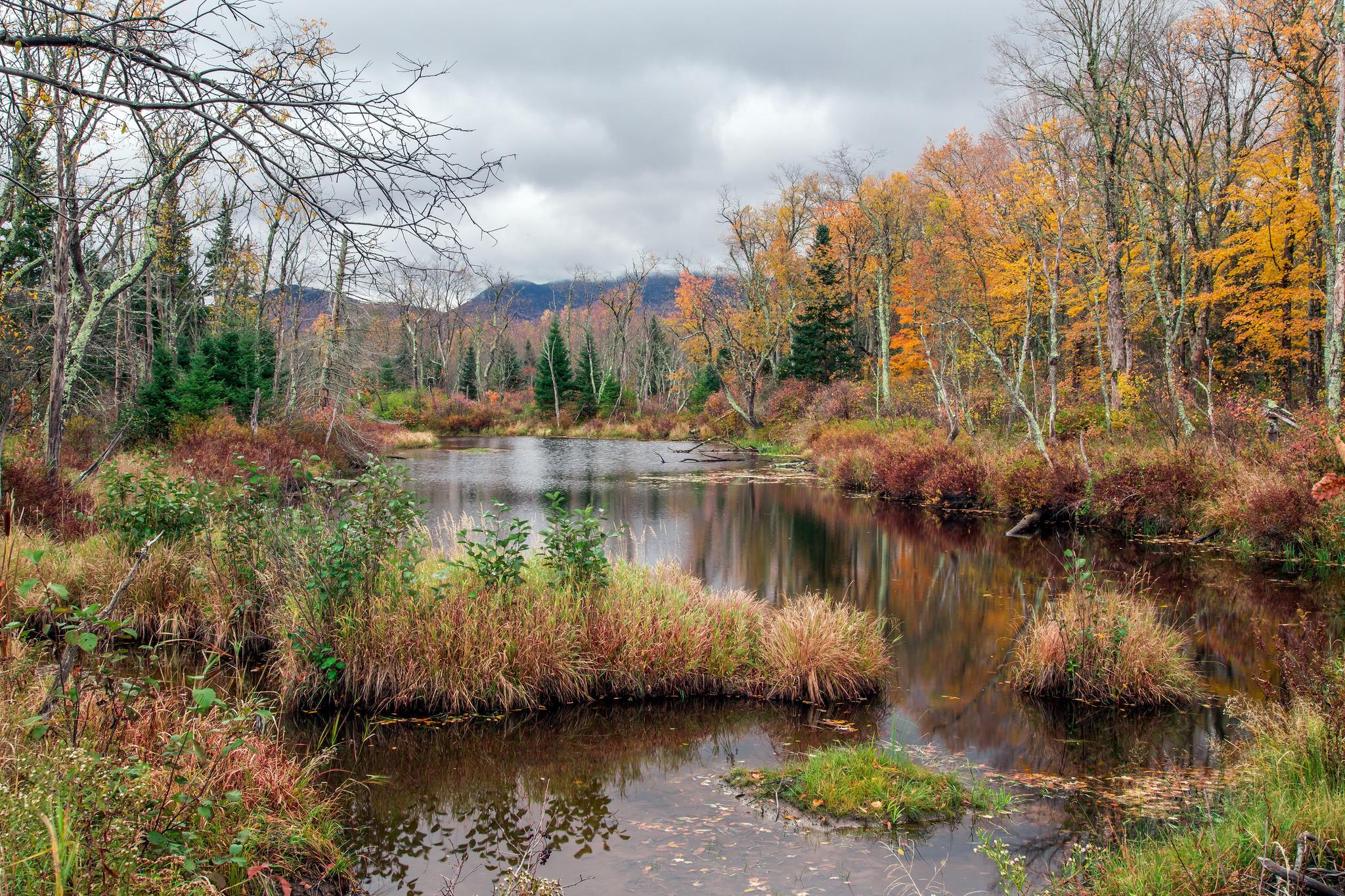 обои осень, водоём, озеро, деревья картинки фото