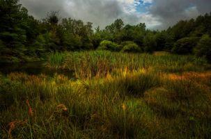Бесплатные фото поле,дома,закат,деревья,пейзаж