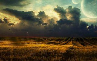 Бесплатные фото поле,пшеница,колосья,горизонт,небо,тучи