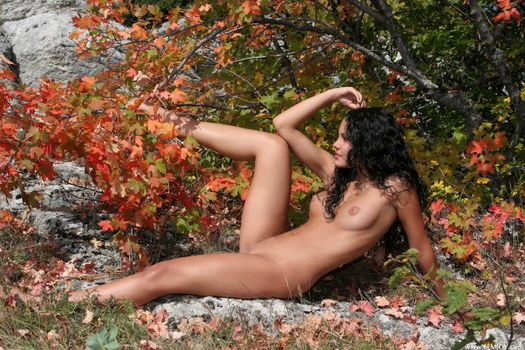 Фото бесплатно голая, поза, Армида