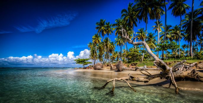 Las Terrenas, Samana, Dominican Republic, Caribbean, Atlantic Ocean