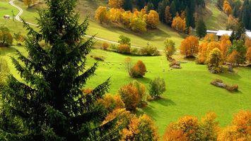 Бесплатные фото Недалеко от Ла-Клюза в Верхней Савойе,ФРАНЦИЯ,осень,поле,деревья,пейзаж