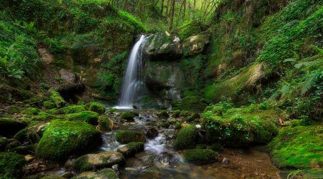 Фото бесплатно река, скалы, деревья, природа