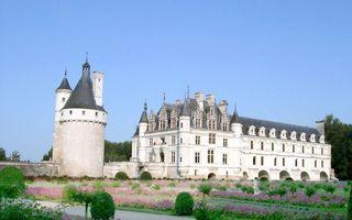 Бесплатные фото замок,окна,арки,башня,растительность,ландшафтный дизайн