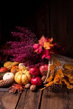 Photo free basket, nuts, cones