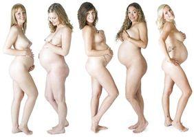 Фото бесплатно юеременные, жнщины, голые