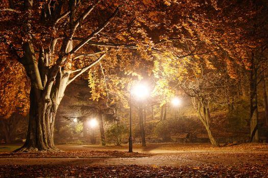 Заставки парк, осень, дорога