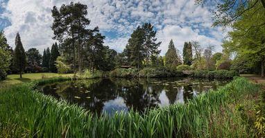 Фото бесплатно озеро, деревья, поле