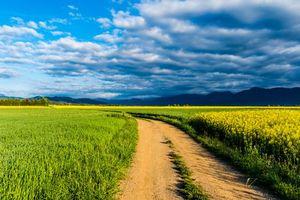 Бесплатные фото Каталония,Испания,поле,дорога,пейзаж