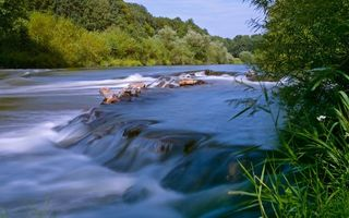 Фото бесплатно река, течение, камни, порог, трава, деревья