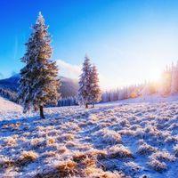 Бесплатные фото закат, зима, иней, деревья, горы, пейзаж