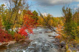 Бесплатные фото осень,река,деревья,пейзаж
