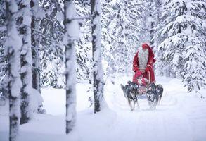 Фото бесплатно дед мороз, сани, упряжка