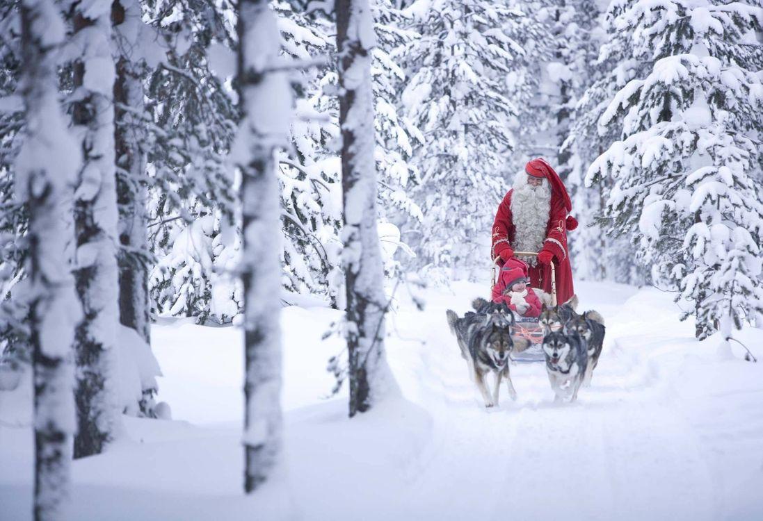 Фото бесплатно дед мороз, сани, упряжка - на рабочий стол