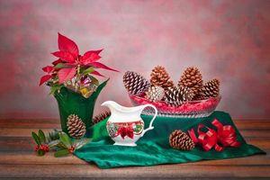 Бесплатные фото стол,ваза,растение,шишки,натюрморт