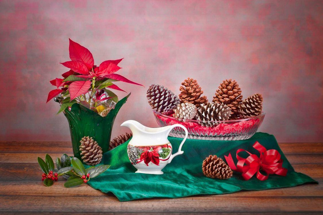 Фото бесплатно стол, ваза, растение, шишки, натюрморт, разное