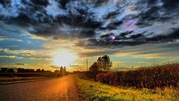 Бесплатные фото дорога,асфальт,обочина,трава,кустарник,деревья,столбы