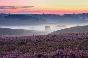 Фото бесплатно горы, пейзаж, туман