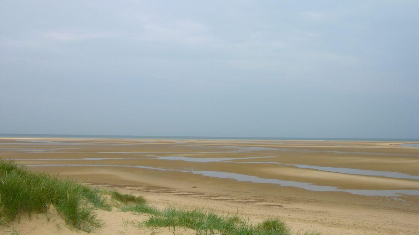 Фото бесплатно засуха, песок, трава, вода, горизонт, небо, пейзажи, пейзажи