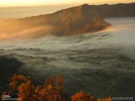 Бесплатные фото горы,туман,national geographic,деревья,листва,ель,города