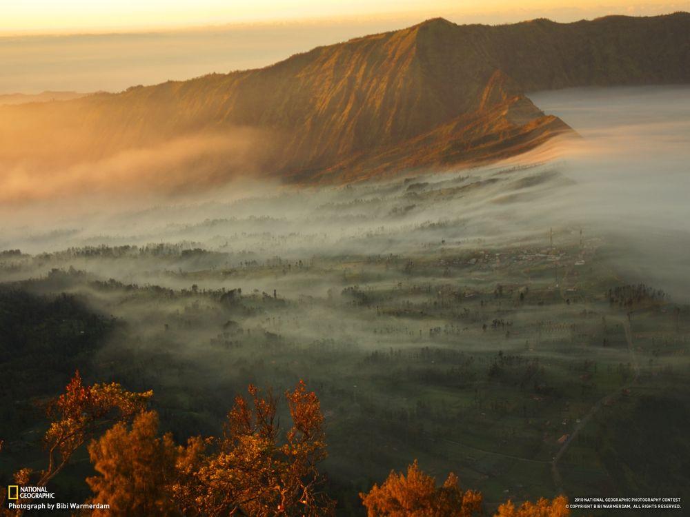 Фото бесплатно горы, туман, national geographic, деревья, листва, ель, города, осень, природа, природа