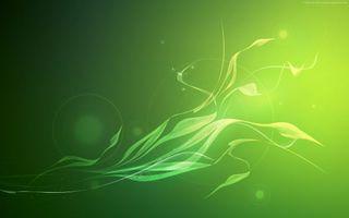 Бесплатные фото абстракции,зеленый,фон,линии,узоры,круги