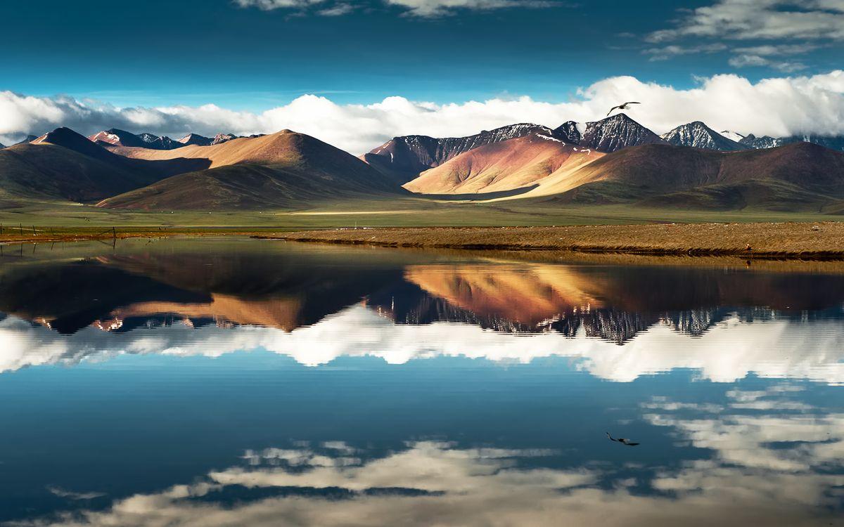 Картинка горы, снег, птица, вода, море, океан, небо, голубое, тучи, облака, песок, пейзажи, природа на рабочий стол. Скачать фото обои природа