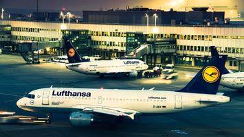 Lufthansa airline cargo transportation