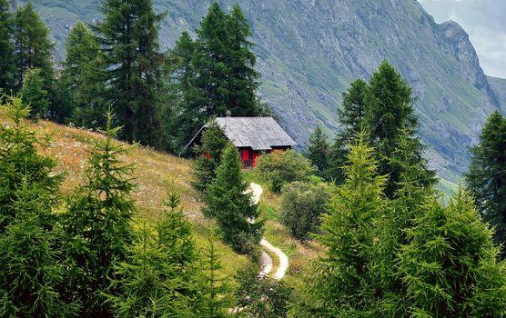 Бесплатные фото альпы,горы,деревья,дорога,домик,пейзаж,природа