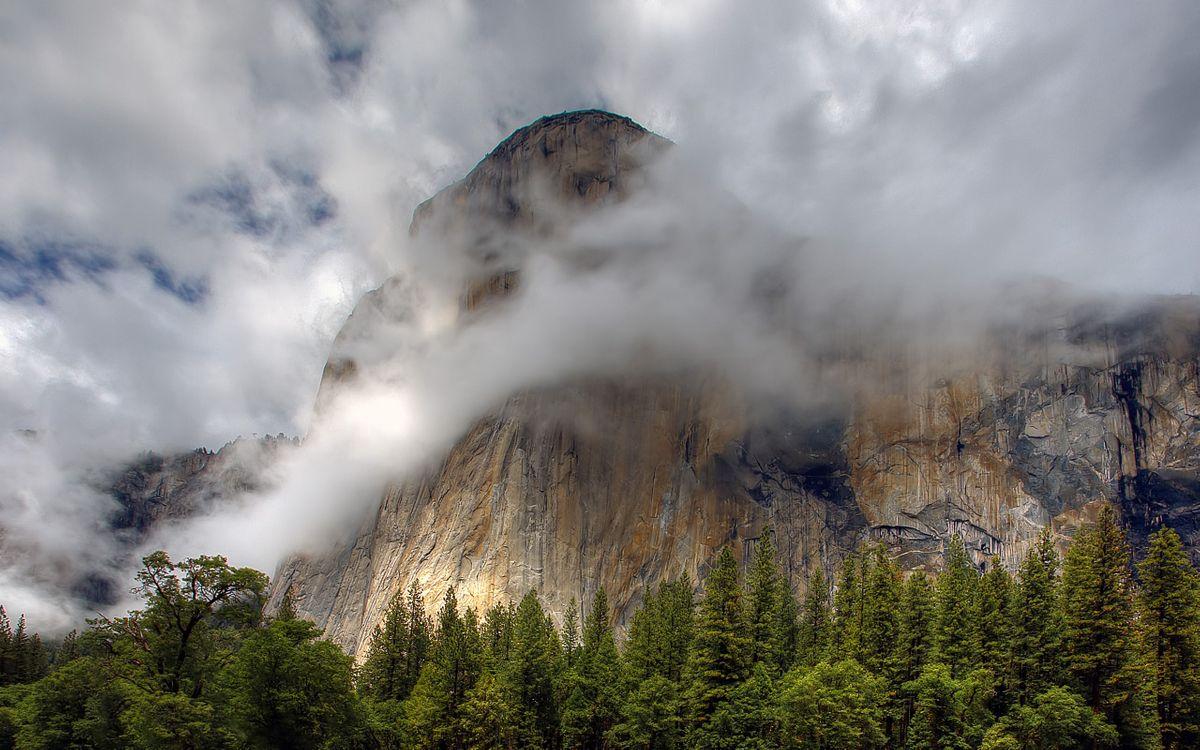 Фото бесплатно гора, скала, деревья - на рабочий стол