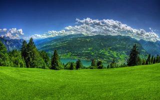 Бесплатные фото горы,облака,небо,синее,снег,пик,трава