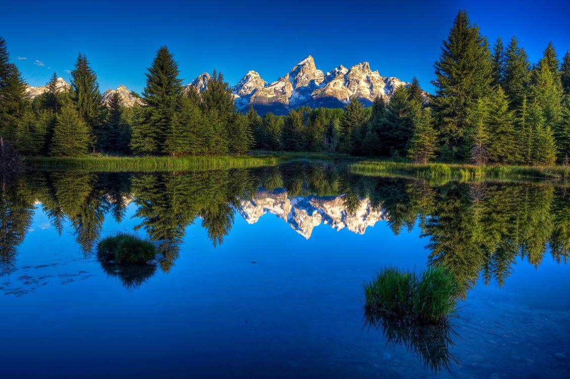 Фото бесплатно лес, деревья, кусты, трава, озеро, вода, горы, природа, природа
