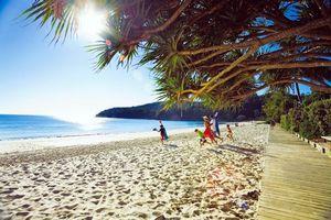 Фото бесплатно тропики, море, пляж