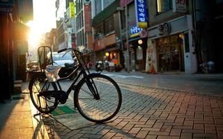 Бесплатные фото улица,дома,окна,вывески,брусчатка,велосипед,город