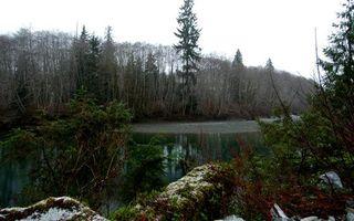 Бесплатные фото вода,река,озеро,лес,небо,деревья,камни