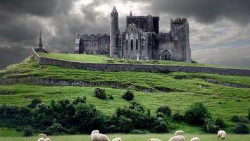 Бесплатные фото замок,крепость,ограда,камень,кустарник,пастбище,овечки
