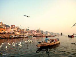 Фото бесплатно река, лодка, чайка