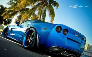 Обои chevrolet, голубой, пальма, машины