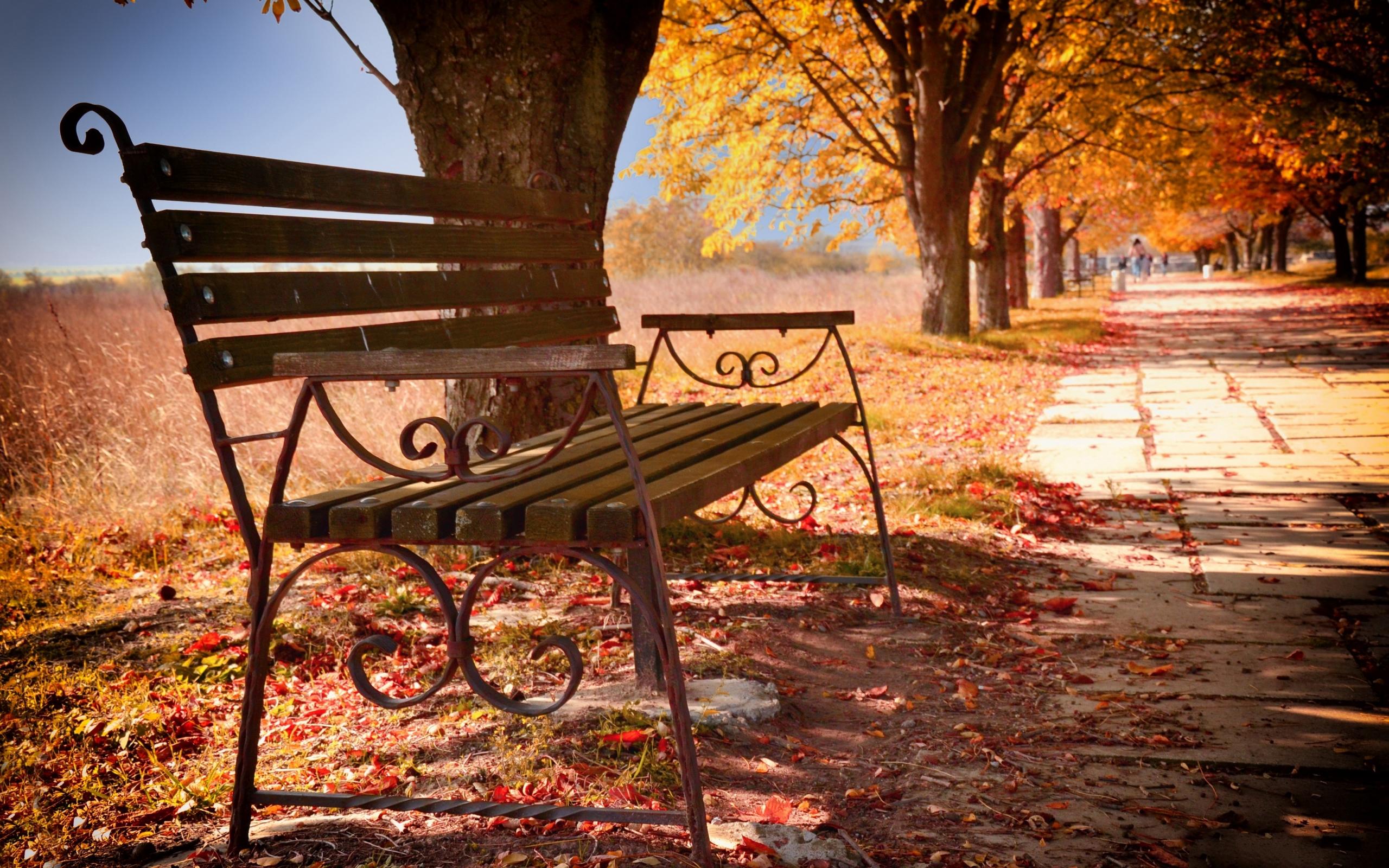 гоша картинки осень скамейки фонарь материалы приспособления понадобятся