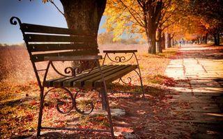 Фото бесплатно осенний, парк, скамейка, листопад, тропинка, деревья, настроение, люди, прохожие, природа