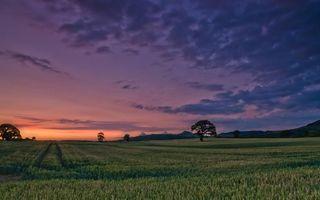 Бесплатные фото закат,солнца,пейзаж,зелень,природа,трава,луг