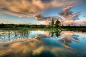 Бесплатные фото река,тростник,берег,деревья,простор,небо,облака