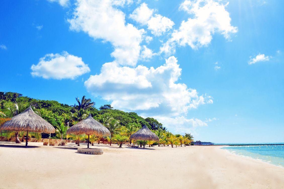 Фото бесплатно тропики, море, пляж, пальмы, пейзажи, пейзажи