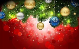 Фото бесплатно ветка, елка, зеленая
