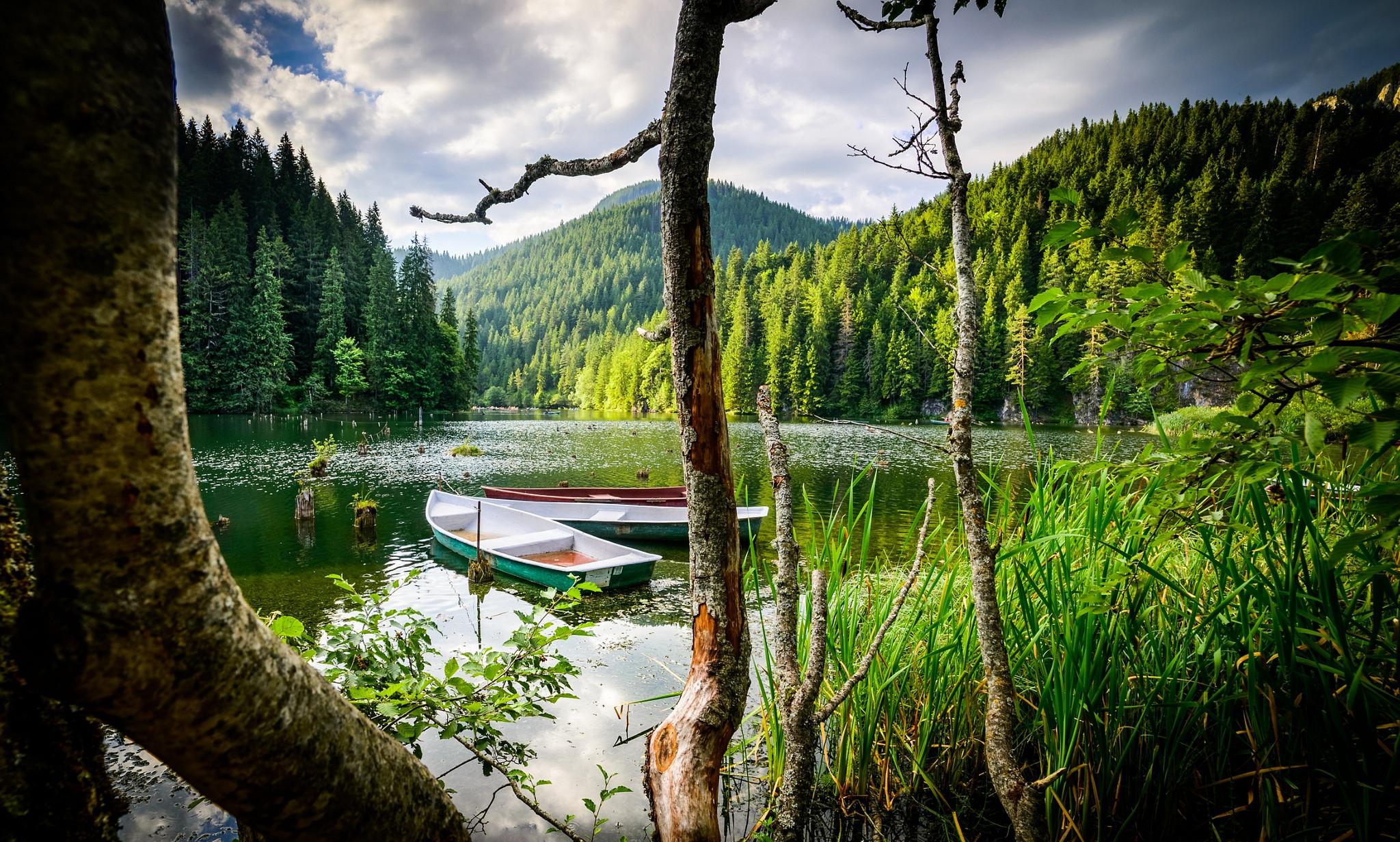 обои водоём, озеро, лодки, деревья картинки фото