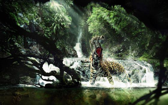 Заставки леопард, обезьяна, битва