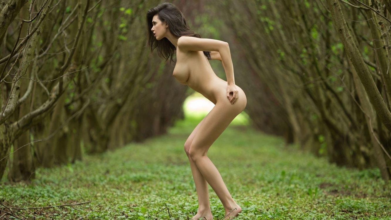 Фото бесплатно девушка, обнаженная, лес - на рабочий стол